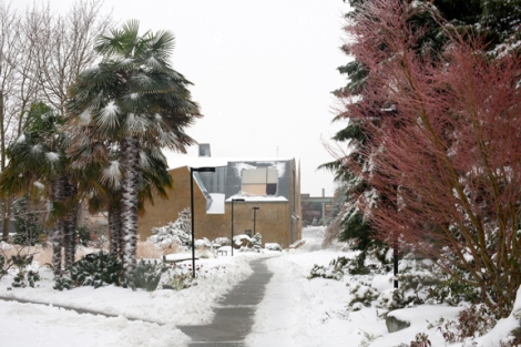 The Seattle University campus under a blanket of snow. Image by Chris Joseph Taylor.