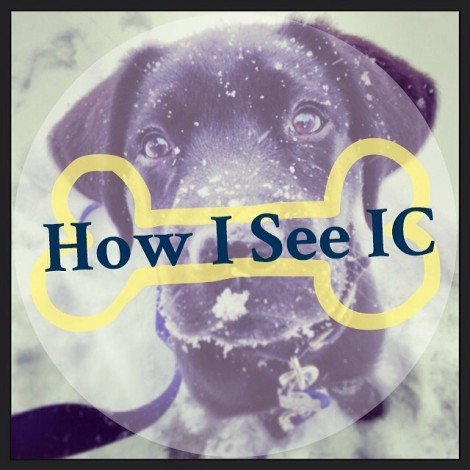 How I See IC Puppy Takeover Intro Picture