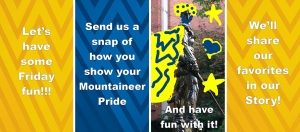 snap contest