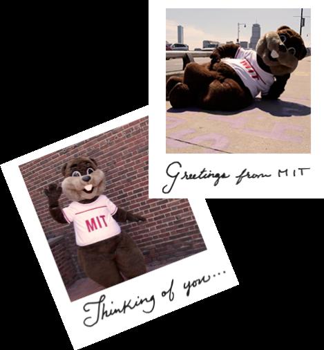 MIT Collage