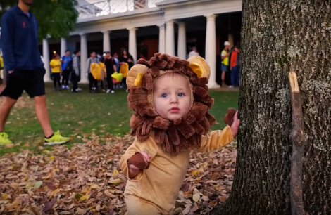 child-as-lion-fw
